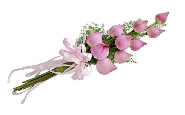 Hình ảnh chúc mừng sinh nhật bằng hoa sen sẽ đem đến cho bạn của bạn niềm hạnh phúc