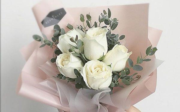 Hoa hồng trắng của sự thanh tao, trang nhã